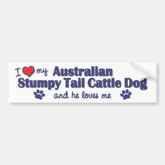 I Love My Aust. Stumpy Tail Cattle Dog (Male Dog) Car Bumper Sticker