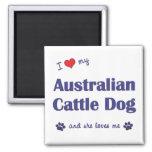 I Love My Australian Cattle Dog (Female Dog) 2 Inch Square Magnet