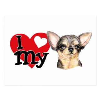 I Love My B&T Chihuahua Postcard