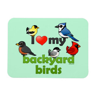 I Love My Backyard Birds Magnet