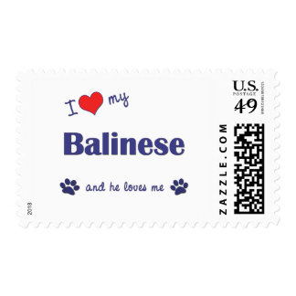 I Love My Balinese (Male Cat) Postage Stamps