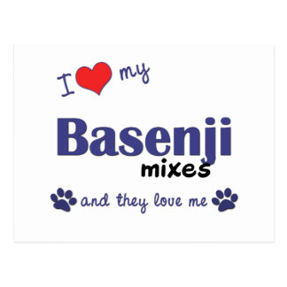 I Love My Basenji Mixes (Multiple Dogs) Postcard
