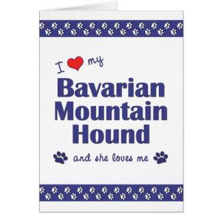 I Love My Bavarian Mountain Hound (Female Dog) Card