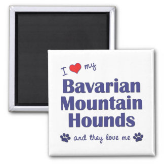 I Love My Bavarian Mountain Hounds (Multiple Dogs) Magnet