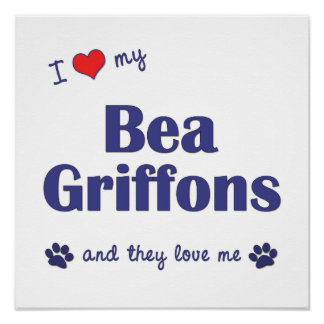 I Love My Bea Griffons (Multiple Dogs) Poster