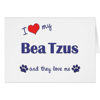 I Love My Bea Tzus (Multiple Dogs) Greeting Cards