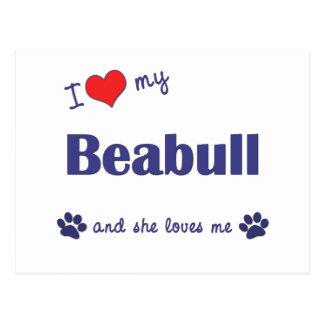I Love My Beabull (Female Dog) Post Card