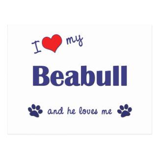 I Love My Beabull (Male Dog) Postcard