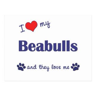 I Love My Beabulls (Multiple Dogs) Postcard