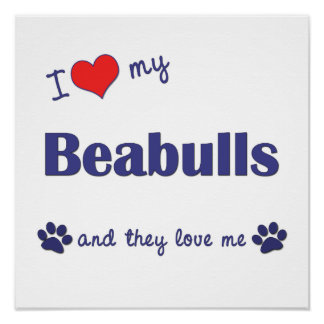 I Love My Beabulls (Multiple Dogs) Poster Print