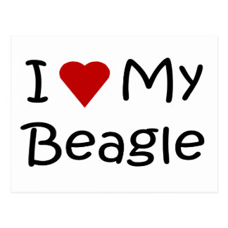 I Love My Beagle Dog Lover Gifts and Apparel Postcard