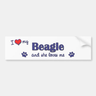 I Love My Beagle (Female Dog) Bumper Sticker