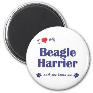 I Love My Beagle Harrier (Female Dog) 2 Inch Round Magnet