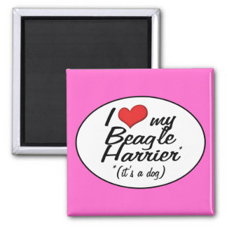 I Love My Beagle Harrier (It's a Dog) 2 Inch Square Magnet