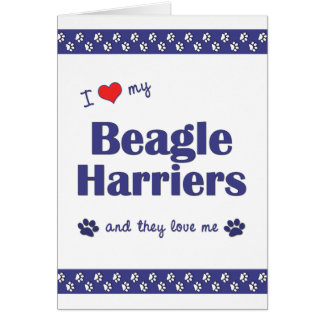 I Love My Beagle Harriers (Multiple Dogs) Stationery Note Card