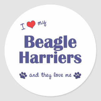 I Love My Beagle Harriers (Multiple Dogs) Classic Round Sticker