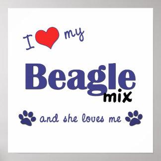 I Love My Beagle Mix (Female Dog) Poster Print