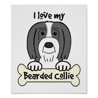 I Love My Bearded Collie Poster
