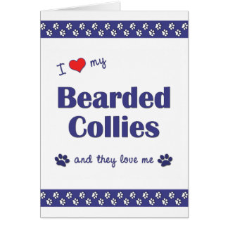 I Love My Bearded Collies (Multiple Dogs) Card