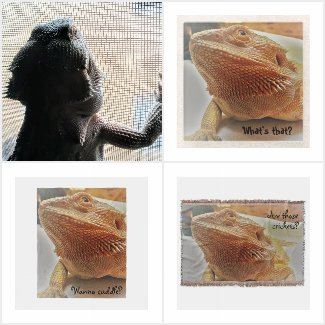 Cute Bearded Dragon Print Gifts
