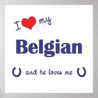 I Love My Belgian (Male Horse) Print