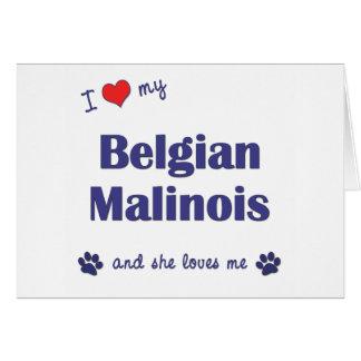 I Love My Belgian Malinois (Female Dog) Card