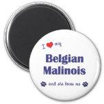 I Love My Belgian Malinois (Female Dog) Refrigerator Magnet