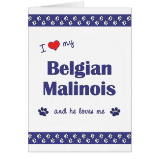 I Love My Belgian Malinois (Male Dog) Card