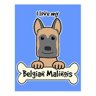 I love My Belgian Malinois Postcard