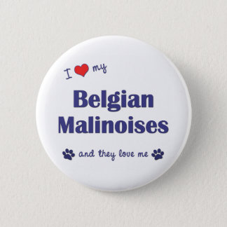 I Love My Belgian Malinoises (Multiple Dogs) Pinback Button
