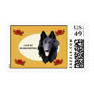 I Love My Belgian Sheepdog Autumn Floral USA Stamp