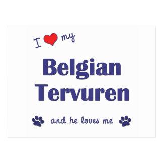 I Love My Belgian Tervuren (Male Dog) Postcard