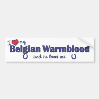 I Love My Belgian Warmblood (Male Horse) Bumper Sticker