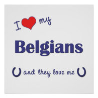 I Love My Belgians (Multiple Horses) Posters
