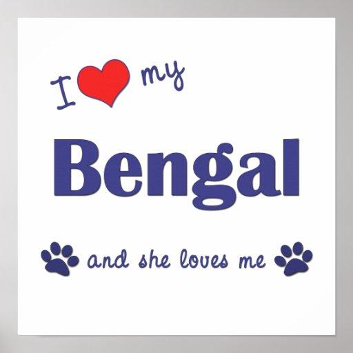 I Love My Bengal (Female Cat) Poster