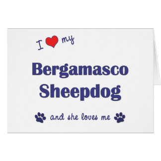I Love My Bergamasco Sheepdog (Female Dog) Greeting Cards