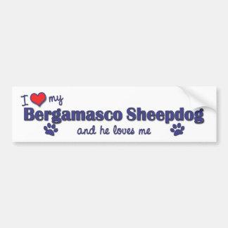 I Love My Bergamasco Sheepdog (Male Dog) Bumper Sticker