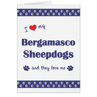 I Love My Bergamasco Sheepdogs (Multiple Dogs) Greeting Card