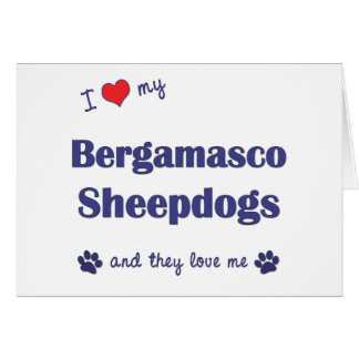 I Love My Bergamasco Sheepdogs (Multiple Dogs) Greeting Cards