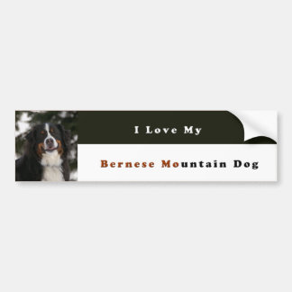 I Love My Bernese Mountain Dog Bumper Sticker