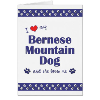 I Love My Bernese Mountain Dog (Female Dog) Card
