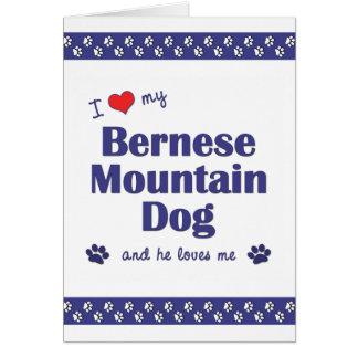 I Love My Bernese Mountain Dog (Male Dog) Card