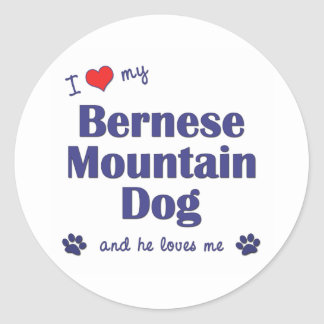 I Love My Bernese Mountain Dog (Male Dog) Classic Round Sticker