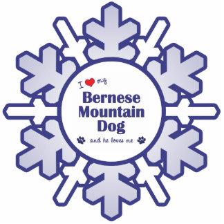 I Love My Bernese Mountain Dog (Male Dog) Photo Cutout