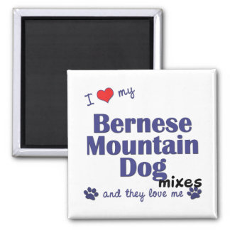 I Love My Bernese Mountain Dog Mixes (Multi Dogs) Magnet