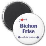 I Love My Bichon Frise (Female Dog) Refrigerator Magnets