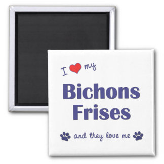 I Love My Bichons Frises (Multiple Dogs) 2 Inch Square Magnet