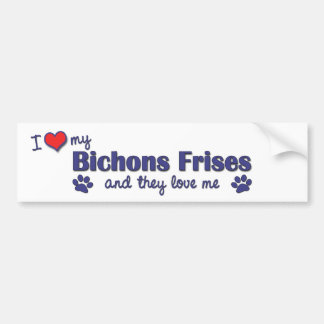 I Love My Bichons Frises (Multiple Dogs) Bumper Sticker