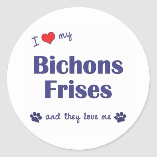 I Love My Bichons Frises (Multiple Dogs) Stickers