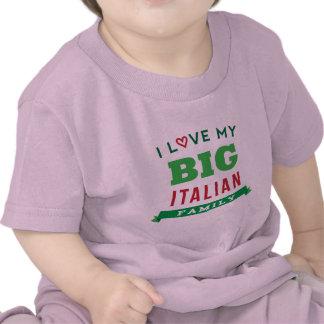 I Love My Big Italian Family Reunion T-Shirt Idea